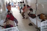 16 admitted to west godavari district hospital with eluru type symptoms